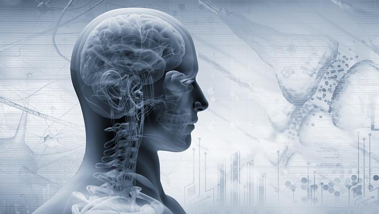 illustration of human skill and brain inside