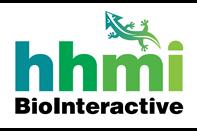 BioInteractive Logo