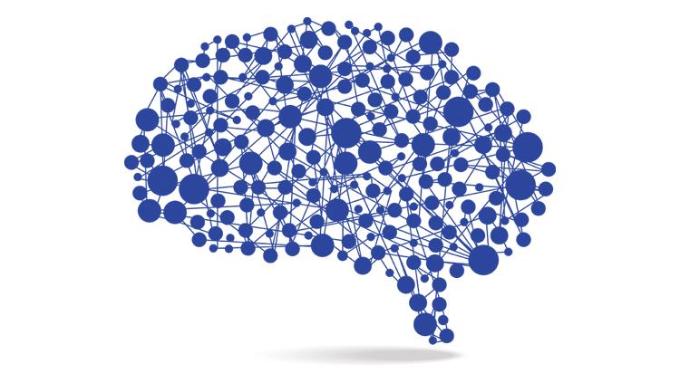 image of illustrated brain