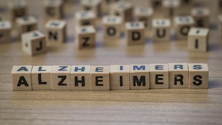 Alzheimers blocks