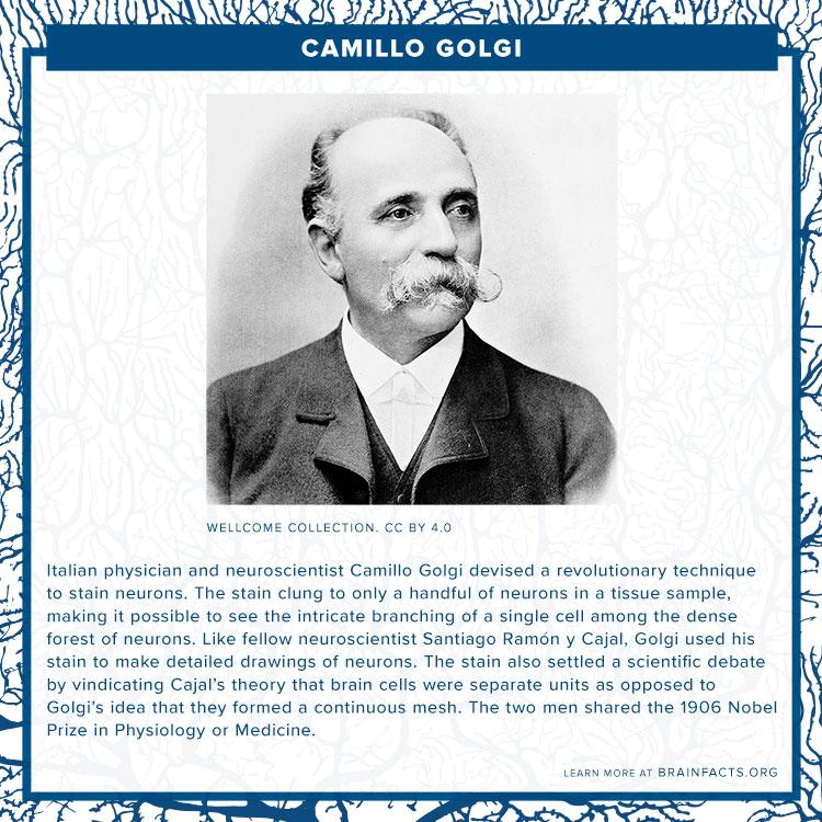 Camillo Golgi Brain Byte