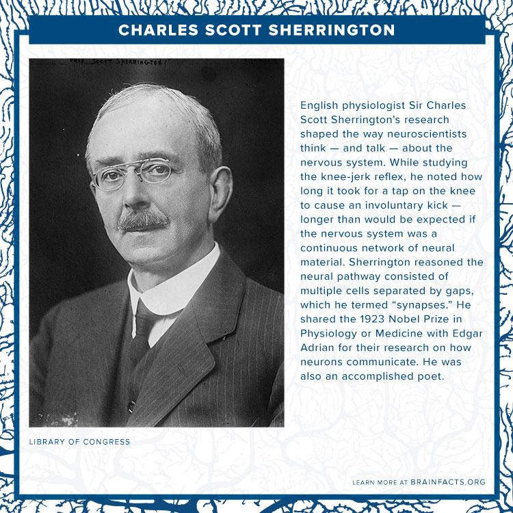 Charles Scott Sherrington Brain Byte